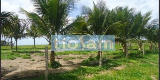 Fazenda 60 km de Porto Seguro Bahia