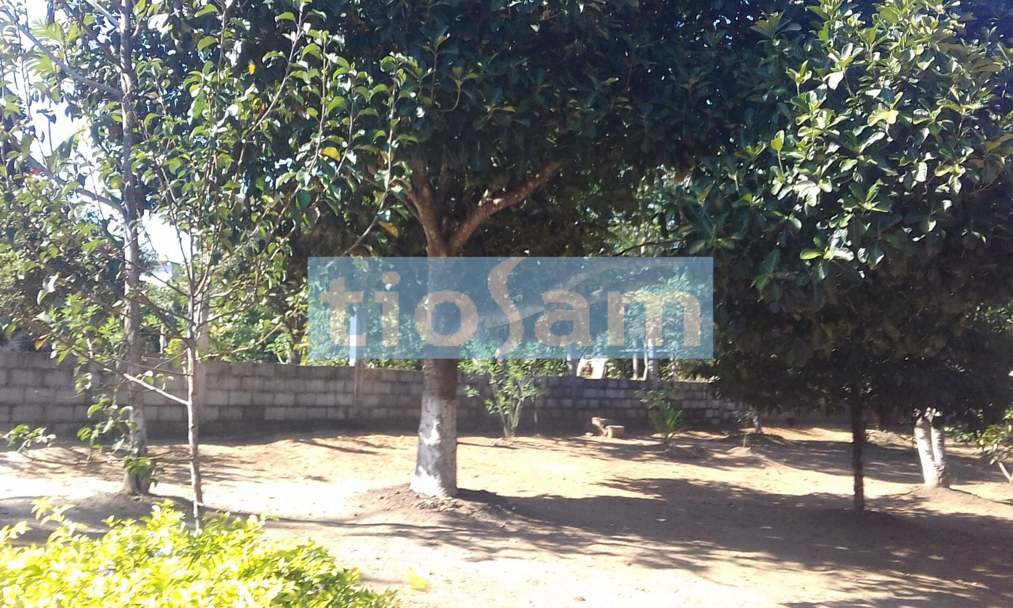 Chácara com 3 quartos Santa Clara Rural Ilha Do Sol Guarapari